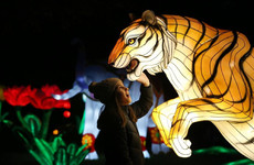 7 family events to check out this weekend - from Chinese lanterns to outer space