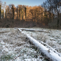 It's going to be a cold and rainy weekend with frosty conditions forecast