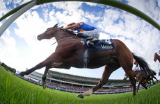 O'Brien, O'Brien and Mullins line up massive Irish challenge for the Melbourne Cup