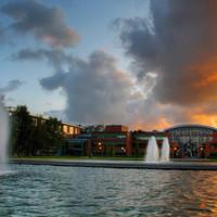 Report criticises University of Limerick over €1.7 million staff severance deals