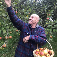 18 reasons why Patrick Stewart's Twitter account is probably the only good thing about 2017