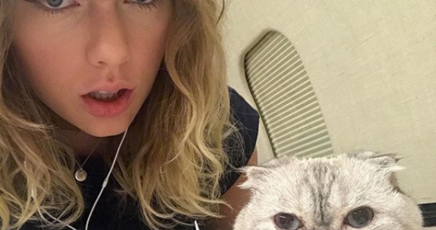 Taylor Swift, Liam Payne and Drake... it's our celeb winners and losers of the week