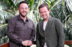 Poll: Would you be bothered watching I'm A Celebrity?