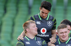 John Ryan back in Ireland camp, Carbery Schmidt's only new injury absence