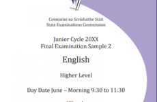 Teenagers to make case for extra time in Junior Cert English exam