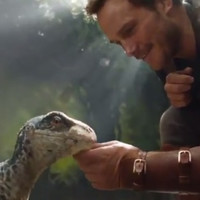 People are losing it over this clip of Chris Pratt and a baby raptor from the new Jurassic World movie