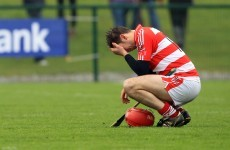 Preview: Little to choose between the Fitzgibbon Cup's final four