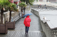 Dublin council is recruiting outside help to look after the unloved Liffey boardwalk