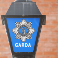 Two brothers kicked, punched and spat at gardaí and stripped down 'entirely'