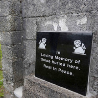 'Now, I can tell my stories. I've been silenced my whole life': Tuam survivors network launches