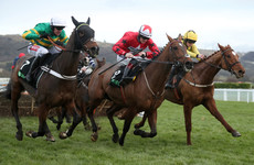 So often the bridesmaid, My Tent Or Yours sees off The New One at Cheltenham