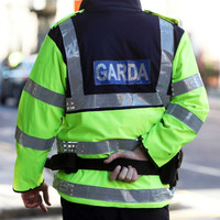 Elderly man beaten over the head with a stick during Offaly burglary