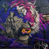 Double Take: The facts behind *that* unmissable tiger mural in Waterford