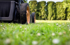 A bizarre story about a 'stolen' lawnmower made it into official government records 30 years ago
