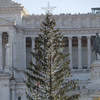 'Baldy toilet brush': Locals aren't happy with Rome's wilted Christmas tree