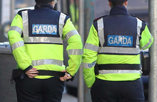 Garda Ombudsman appeals for witnesses to arrest of man in Limerick