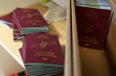 20% of Irish passports issued this year were for people in Northern Ireland and Great Britain