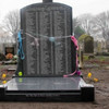 Dead from malnutrition and heart failure: 58 more children identified in unmarked graves in Dublin cemetery