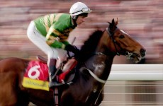 The Magnificent Seven: Cheltenham champions