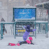 Four killed, flights cancelled and schools closed as 'bomb cyclone' batters the US