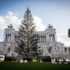 Dead on arrival, Rome's 'mangy' Christmas tree set to be immortalised
