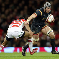 Another injury blow for Wales as Ospreys flanker ruled out of Six Nations