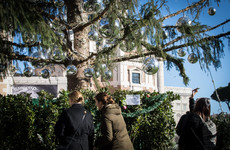 Rome's 'baldy' Christmas tree is being made into a family hut and souvenirs