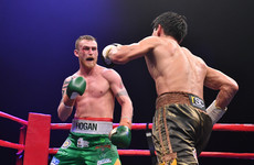 Kildare's Hogan confirmed to fight English rival in final step towards world title shot