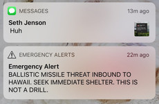 'An epic failure': Fallout continues after pushing of 'wrong button' causes mass panic in Hawaii