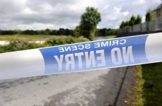 Updated: Two men arrested after body discovered in Kerry bog