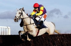 Pipe dream: Grands Crus skips Gold Cup in favour of RSA