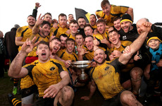Ashbourne retain All-Ireland Junior title as unbeaten Lansdowne move 16 points clear