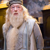 Fans are disappointed that J.K. Rowling isn't highlighting Dumbledore's sexuality in the new Fantastic Beasts movie