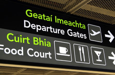 Details of all air passengers travelling from Ireland could be sent to Europe and US under new laws