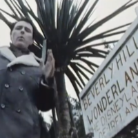 This 1983 RTÉ report from a Cork theme park called 'Beverly Hills Wonderland' is just brilliant