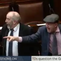 Poll: What do you think about Dáil rows?