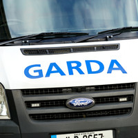 Suspect in murder case suffered traumatic brain injury while trying to escape gardaí