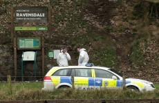Appeal for information about bodies found in burnt-out car near Dundalk