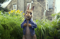 Filmmakers apologise after complaints over allergy scene in Peter Rabbit movie
