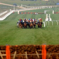 Two more fatalities at Cheltenham today