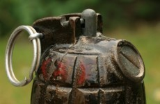 WWI-era grenade discovered in Leitrim garden