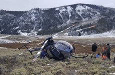 Elk dies after leaping at low flying helicopter