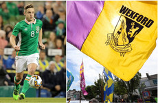 'Great for Wexford football' - ex-Irish striker Doyle to get involved in GAA with county's U20 side
