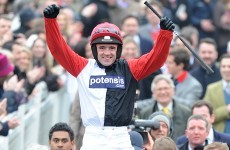 History-maker Big Buck's wins Cheltenham feature