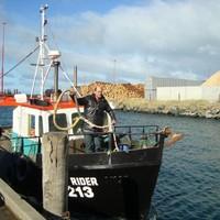 Fishing boat sinks in New Zealand, 8 presumed dead