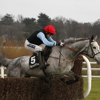 Quel Esprit ruled out of Gold Cup run