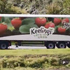 Keelings has taken a swipe at the government for having no 'vision' for family firms