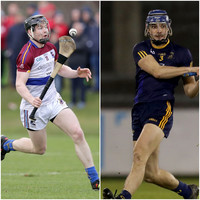 Watch the Fitzgibbon Cup final live: UL v DCU