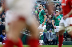 'A talent hits a target, a genius hits a target nobody else can see' - Van Graan on Conor Murray