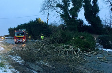 Roof collapse, car fires and trees down - busy night for rescue crews despite weather conditions